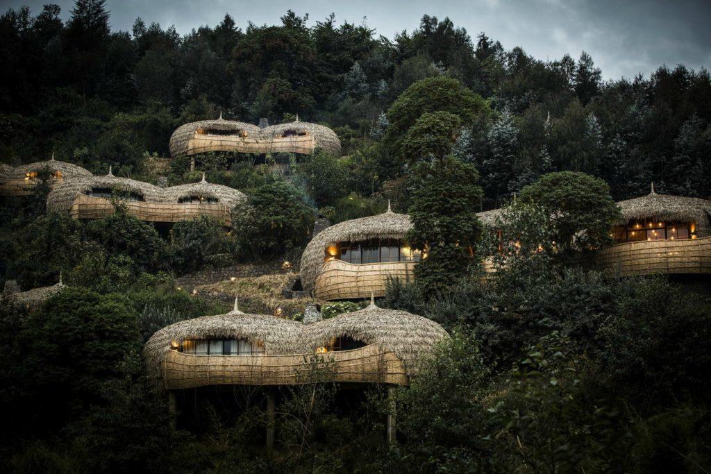 Baumhotel Bisate Lodge