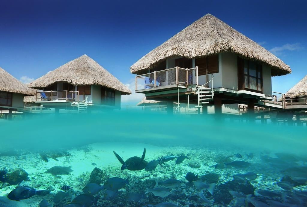 Le Meridien Resort