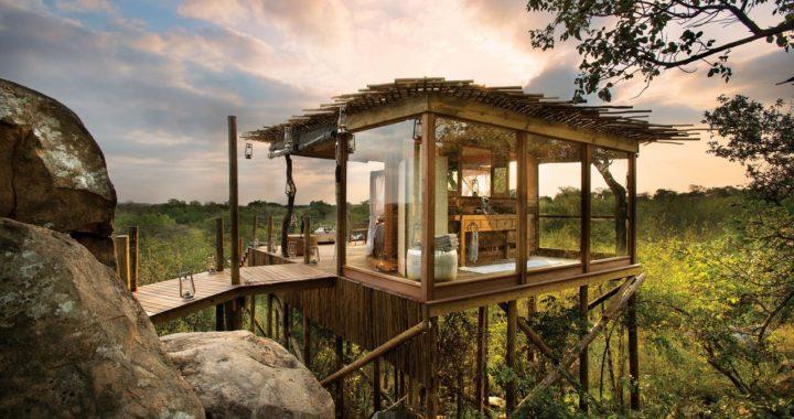 Baumhaushotels – Die Schönsten Weltweit