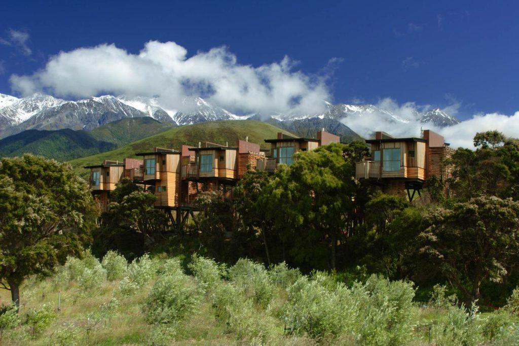 The Hapuku Lodge + Tree Houses