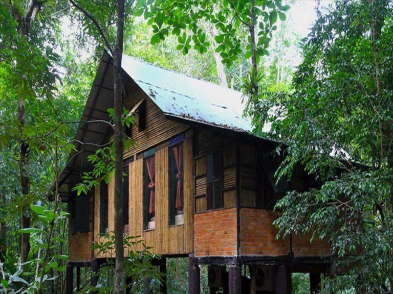 Rabeang-Pasak-Baumhaus-Resort